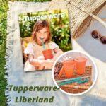 Story of Tupperware-Liberland company